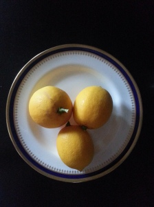 January Lemons